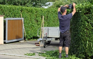 professional Wembley hedge cutting services