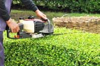 Wembley hedge trimming services