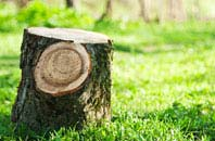 Wembley tree stump removal services